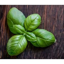 Aceite esencial de Albahaca (Aromafume)